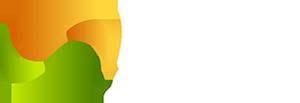 Buy vegetables and plants seeds online | Agrijunction