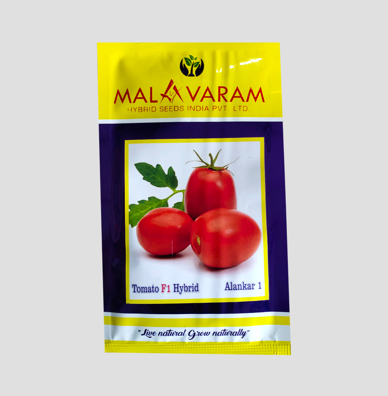 F1 Hybrid Tomato Seed