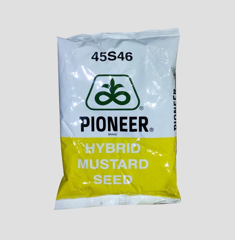 Pioneer 45S46 Hybrid Mustard Seeds