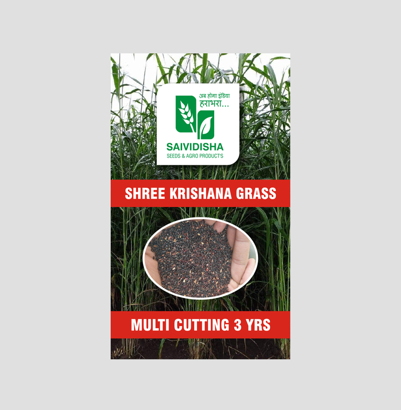 Shrikrishana Multicutting Grass Seeds