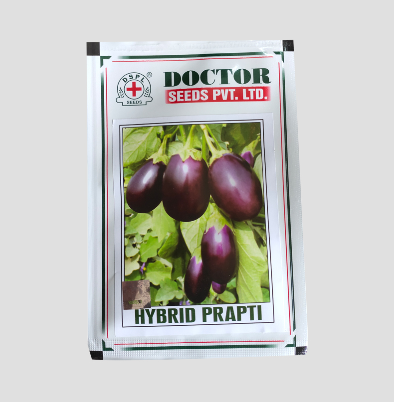 Hybrid Prapti Brinjal Seeds