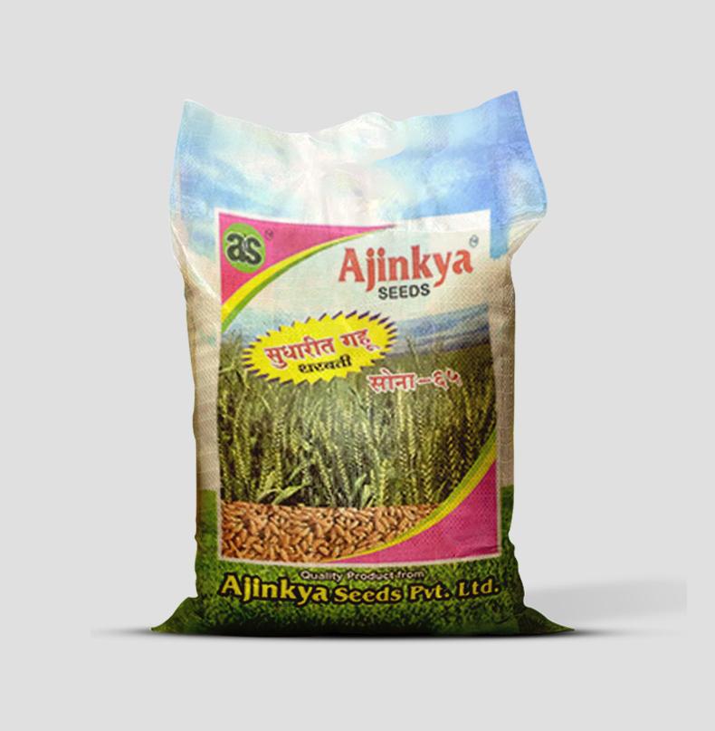 Wheat Sona-65 Wheat Seed