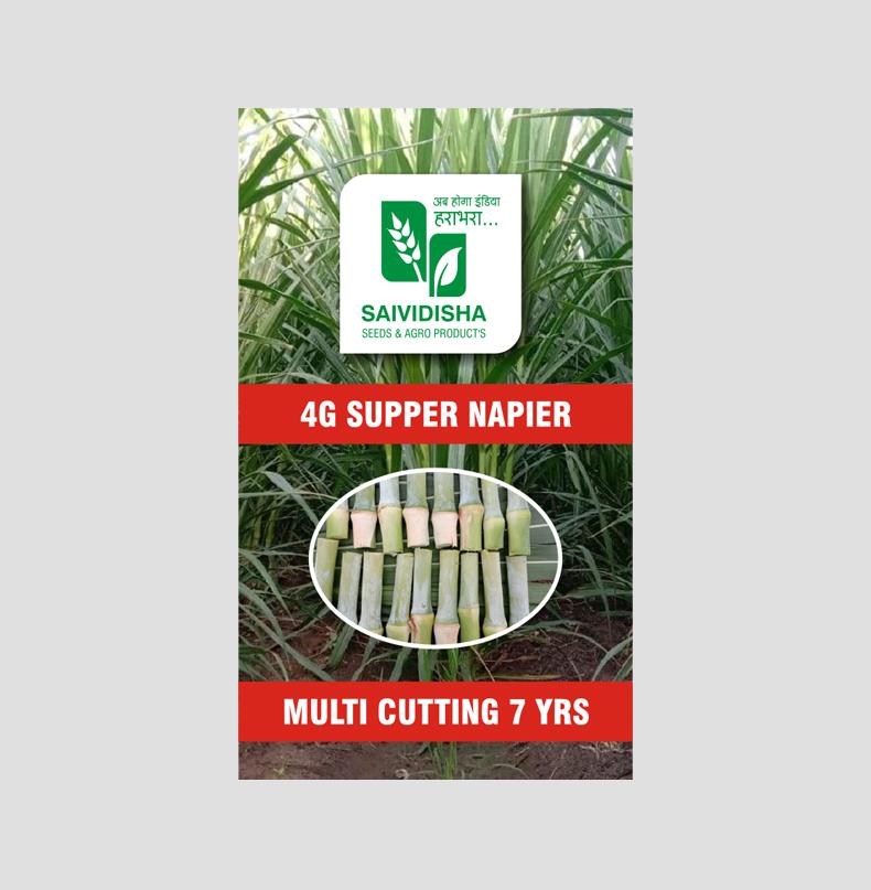 4G Bullet Super Napier stick