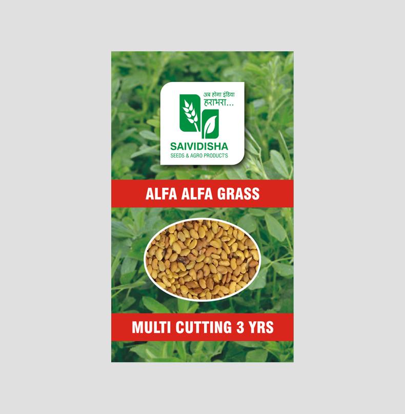 Fenugreek grass/ Alfa Alfa Grass